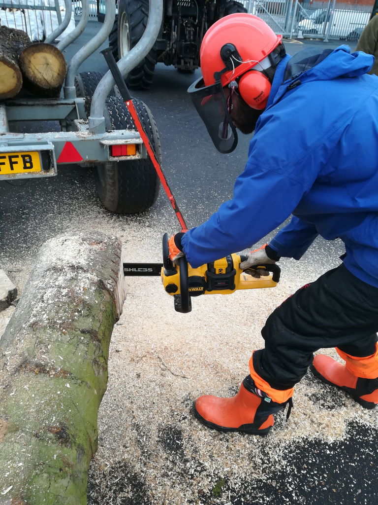 2018-12-04_14-02-45 chainsaw training GWE small