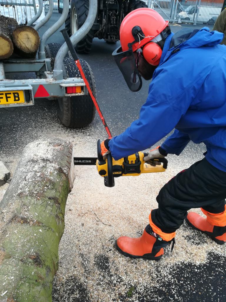 2018-12-04_14-02-45 chainsaw training GWE small
